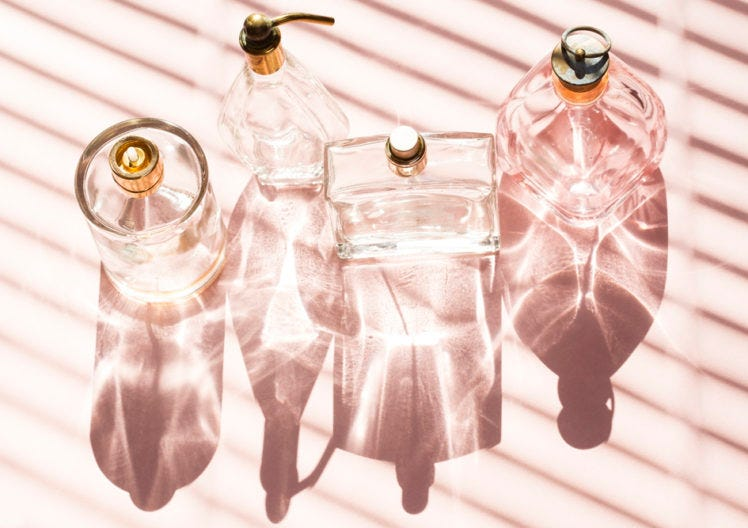 Beginner's guide to… fragrance families