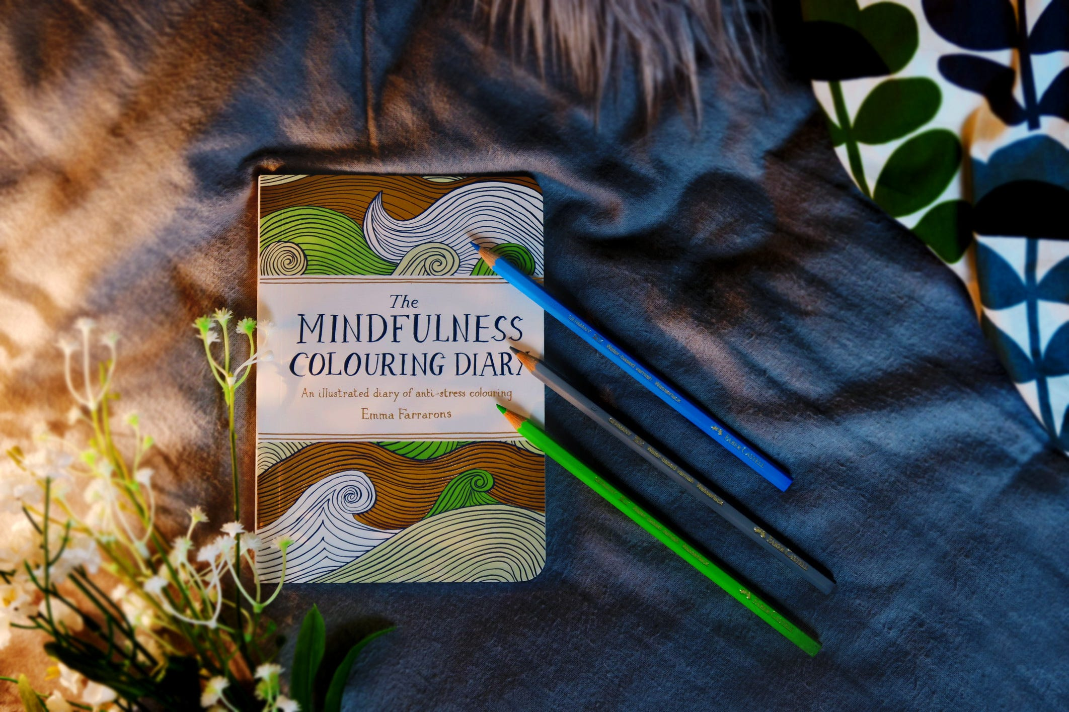 mindfullness-diary