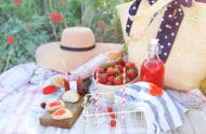 summer-picnic-guide