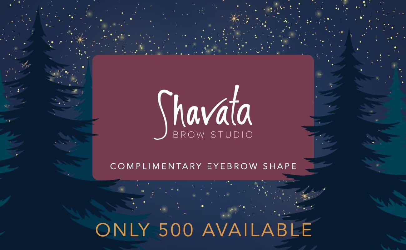 shavata-brow-treatment
